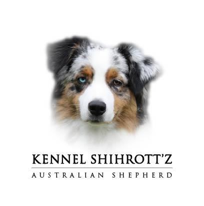 Kennel Shihrott'z